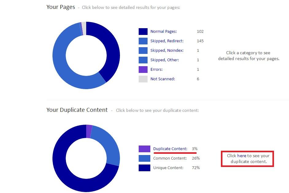 contenido duplicado interno siteliner resultado